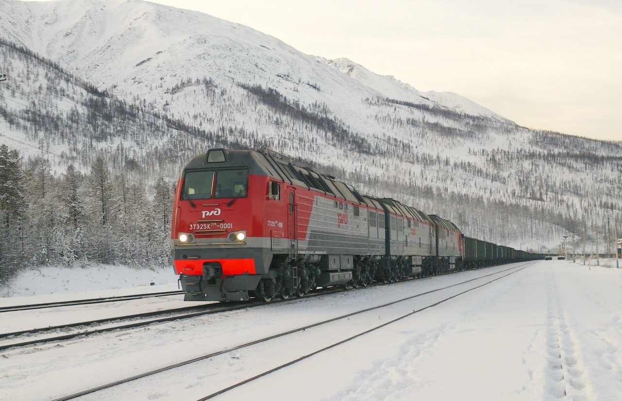Putin Asks Government To Allocate $867Mln For Russian Railways